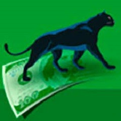 Green Panthera Paid Surveys